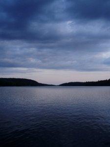 Kushog Lake Windy Pine